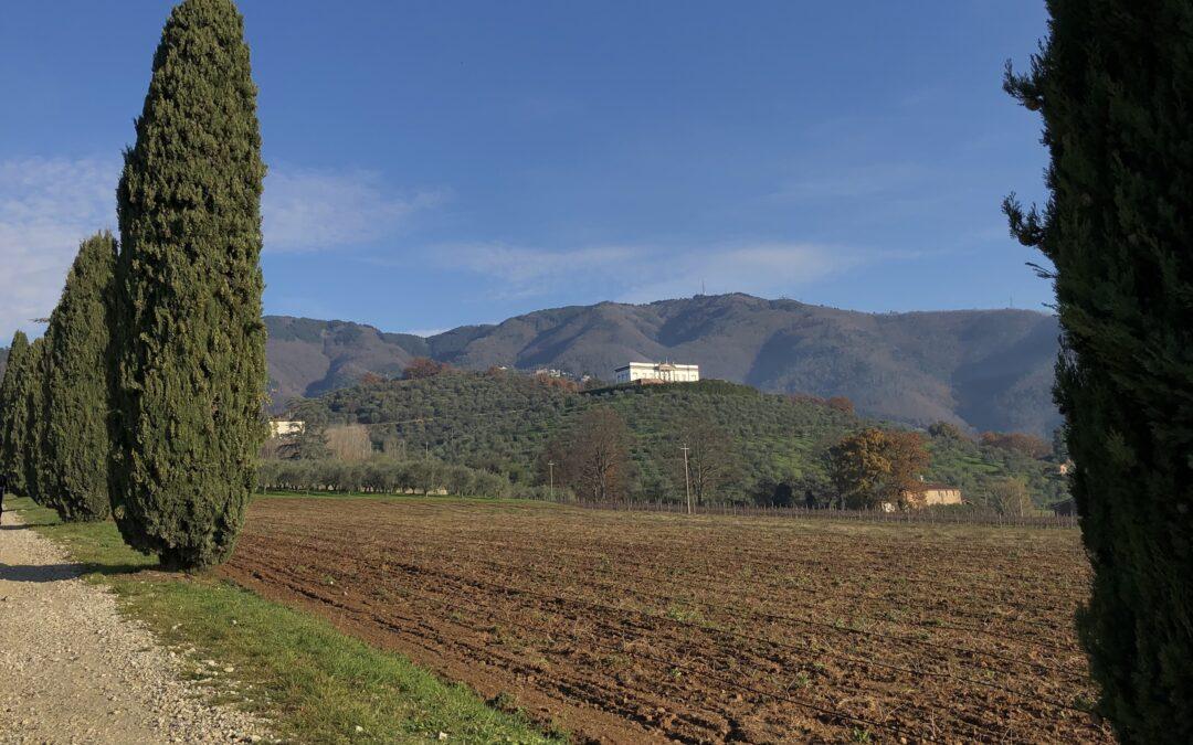 Itinerario di Valgiano (Capannori)