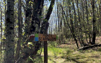 Anello del Monte Scarpiglione (Capannori)